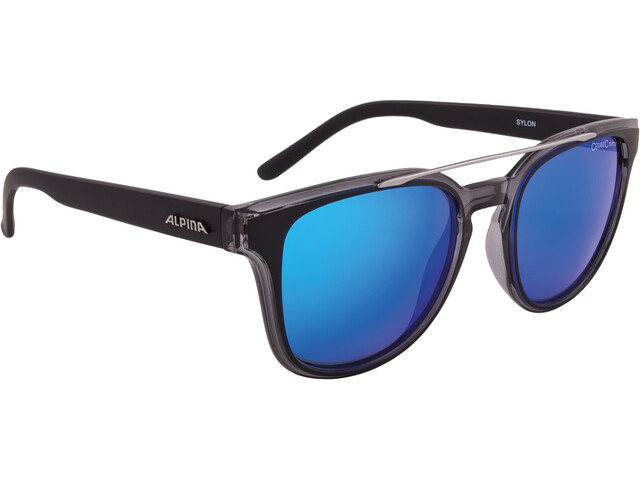 Alpina Sylon Glasses black matt-black transp.